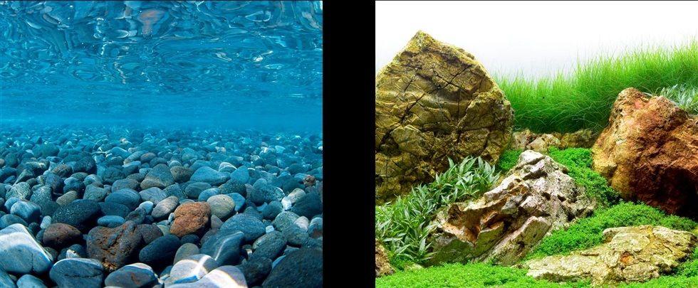 Aquaria MA BkgdStoney Rvr/Jap Garden,18in,25ft-V