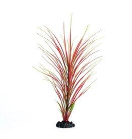 Aquaria UT PP RED/GREEN HAIRGRASS 16IN