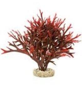 Aquaria (D) GARDEN CLUSTER WATER BUSH RED