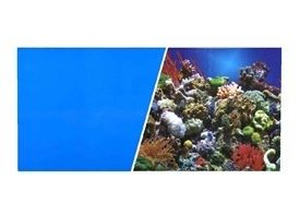"Aquaria MA DOUBLE SIDED 18"" CORAL / BLUE  ($2.99/FT)"
