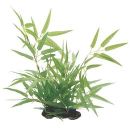 Aquaria (W) FL Bamboo Shoots, L 35cm (14in) w/Base