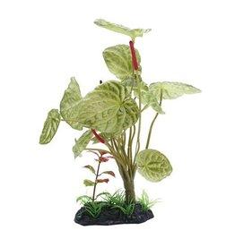 Aquaria (W) FL Large Lotus, 25cm (10in) w/Base