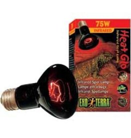 Reptiles EX Heat Glo infrared Lamp 75W-V