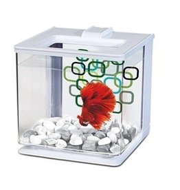 Aquaria MA EZ CARE BETTA KIT WHITE