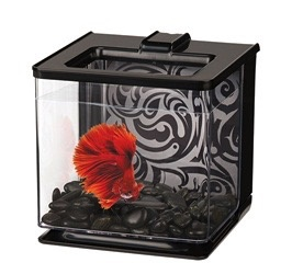 Aquaria MA EZ BETTA KIT - BLACK