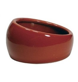 Small Animal LW Ergonomic Dish-Terracotta-Sm-V