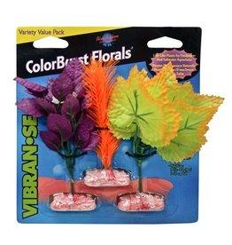 Aquaria (W) ColorBurst Forals® - So. American Fern Cluster