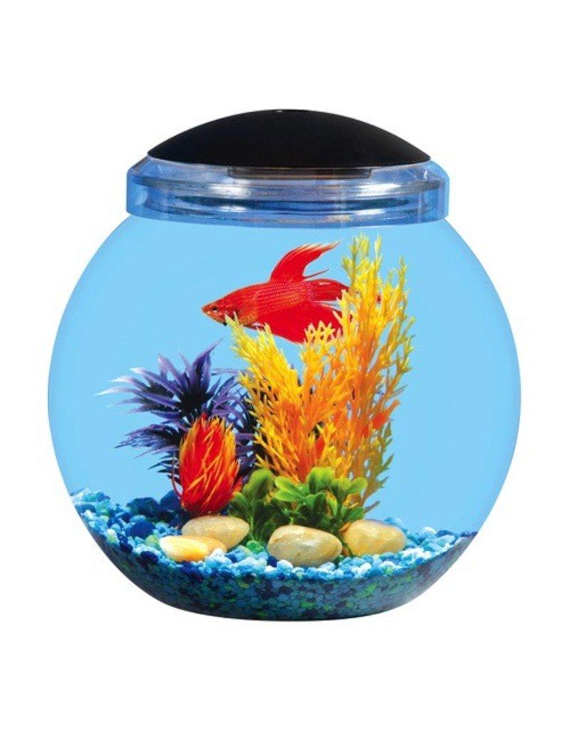 Aquaria (D) AP 1.5 GAL BETTA BOWL LED NO FILTER
