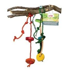 Bird (D) Living World Wacky Branch - For Small & Medium Hookbills