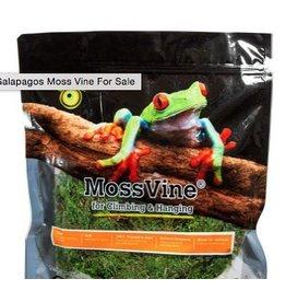 Reptiles (W) GL MOSS VINE 6'