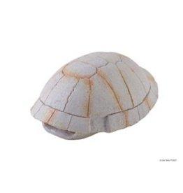 Reptiles Exo Terra Tortoise Shell