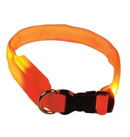 Dog & cat (D) Clip n' Glow LED Collar - Orange - Large