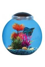 Aquaria (D) Betta Globe Aquarium Kit - 3 gal