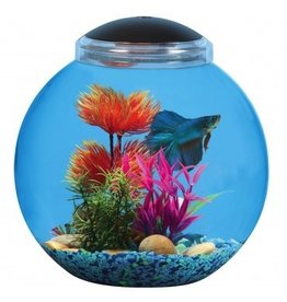 Aquaria (D) Betta Globe Aquarium Kit - 3 gal