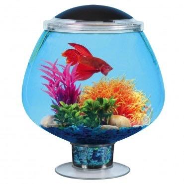 Aquaria (D) Betta Bowl with Stemware Aquarium Kit - 1.7 ga