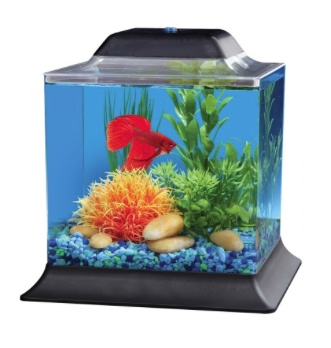 Aquaria (D) API Betta Cube Aquarium Kit - 1.5 gal