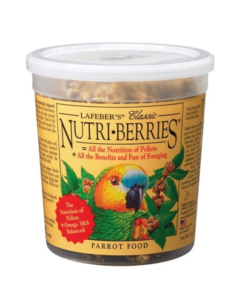 Bird Parrot Nutri-Berries 12.5 oz