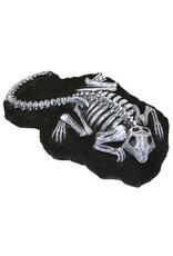 Aquaria (D) Aquarium Decor Fossil Finds Gila Monster (LC)