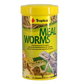 Reptiles Tropical Dried Meal Worms - 30 g