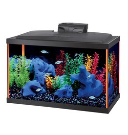 Aquaria (W) NeoGlow Rectangle Aquarium Kit - Orange - 10 gal