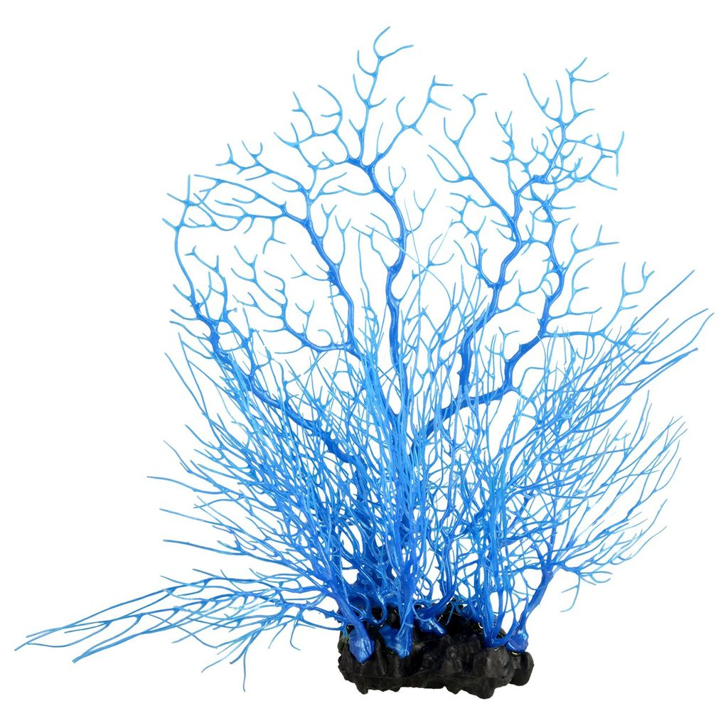 Aquaria w sea fan coral deep blue ricks pet stores aquaria w sea fan coral deep blue publicscrutiny Choice Image