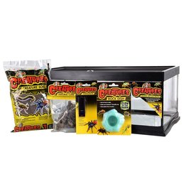 Reptiles Zoo Med Creatures Creature Den Low Profile Starter Kit - 6 gal