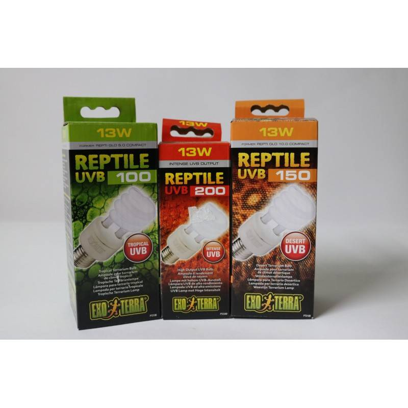 Getting to know Reptile Bulbs