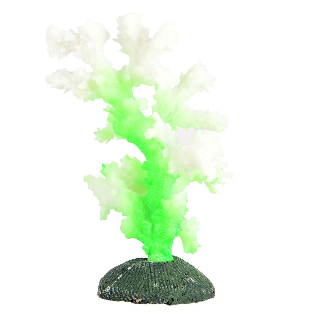 Aquaria Glowing Coral - Green
