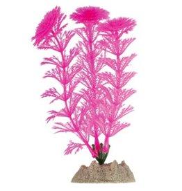 Aquaria GloFish Plant Small Pink