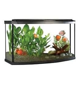 Aquaria (W) Fluval Premium Aquarium Kit with LED - 45 Bow - 170 L (45 US Gal)