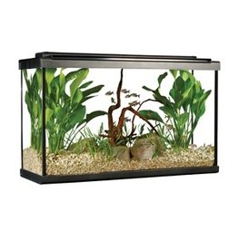 Aquaria (W) Fluval Premium Aquarium Kit with LED - 29 Tall - 110 L (29 US Gal)