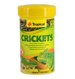 Reptiles Tropical Dried Crickets - 10 g