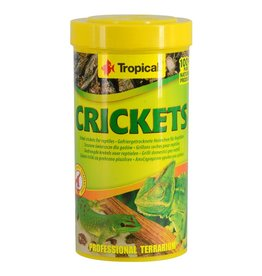 Reptiles (W) Tropical Dried Crickets - 25 g