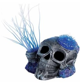 Aquaria (W) Sea Flower Sci-Fi Skull Small Urchin Blue