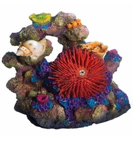 Aquaria (W) Sea Flower Coral Rock Large Urchin Red