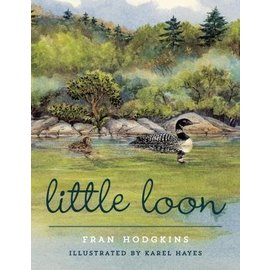 National Book Network Little Loon