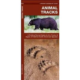 National Book Network Animal Tracks - A Pocket Naturalist Guide