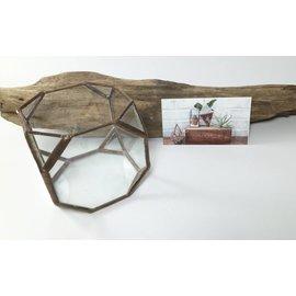 lex + bd Glass Octagon Terrarium