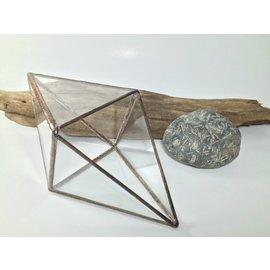 lex + bd Glass Terrarium