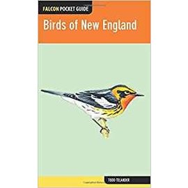 National Book Network Birds of New England - Falcon Pocket Guide
