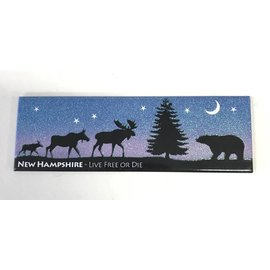 Eastern Illustrating New Hampshire Night Scene Magnet