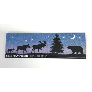 Eastern Illustrating New Hampshire Night Scene Magnet
