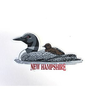 Eastern Illustrating New Hampshire Loon Rubber Magnet
