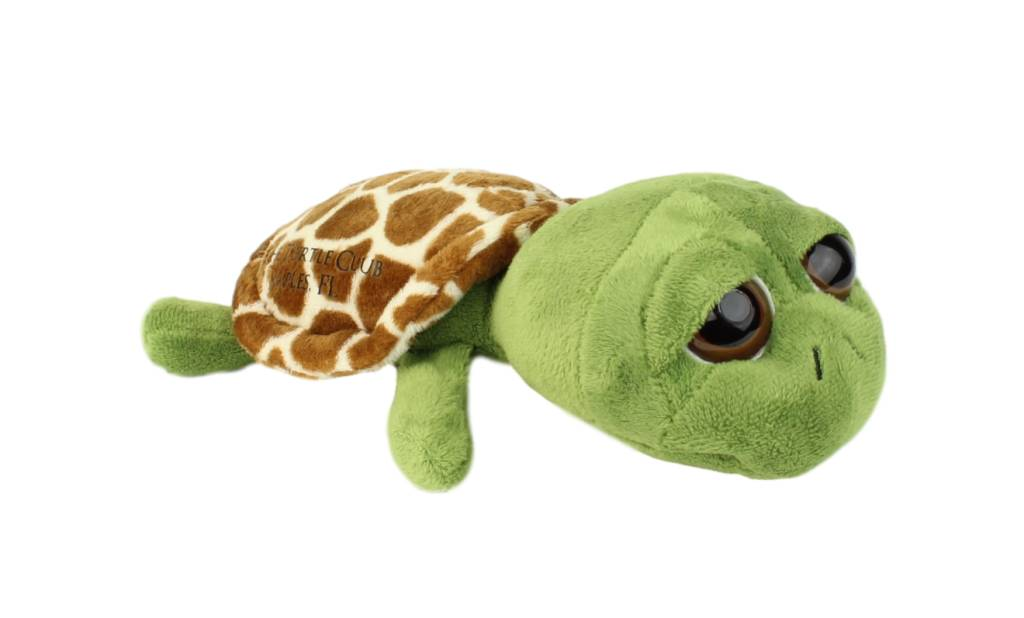 Bright Eyes Plush Turtle