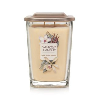 Yankee Candle Co. Yankee Candle Co. Elevation Collection Large Sweet Nectar Blossom