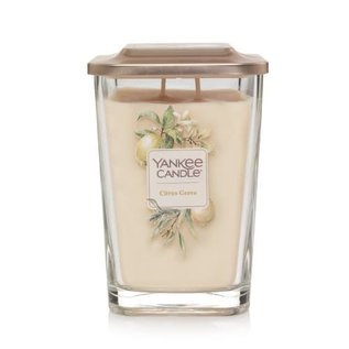 Yankee Candle Co. Yankee Candle Co. Elevation Collection Large Citrus Grove