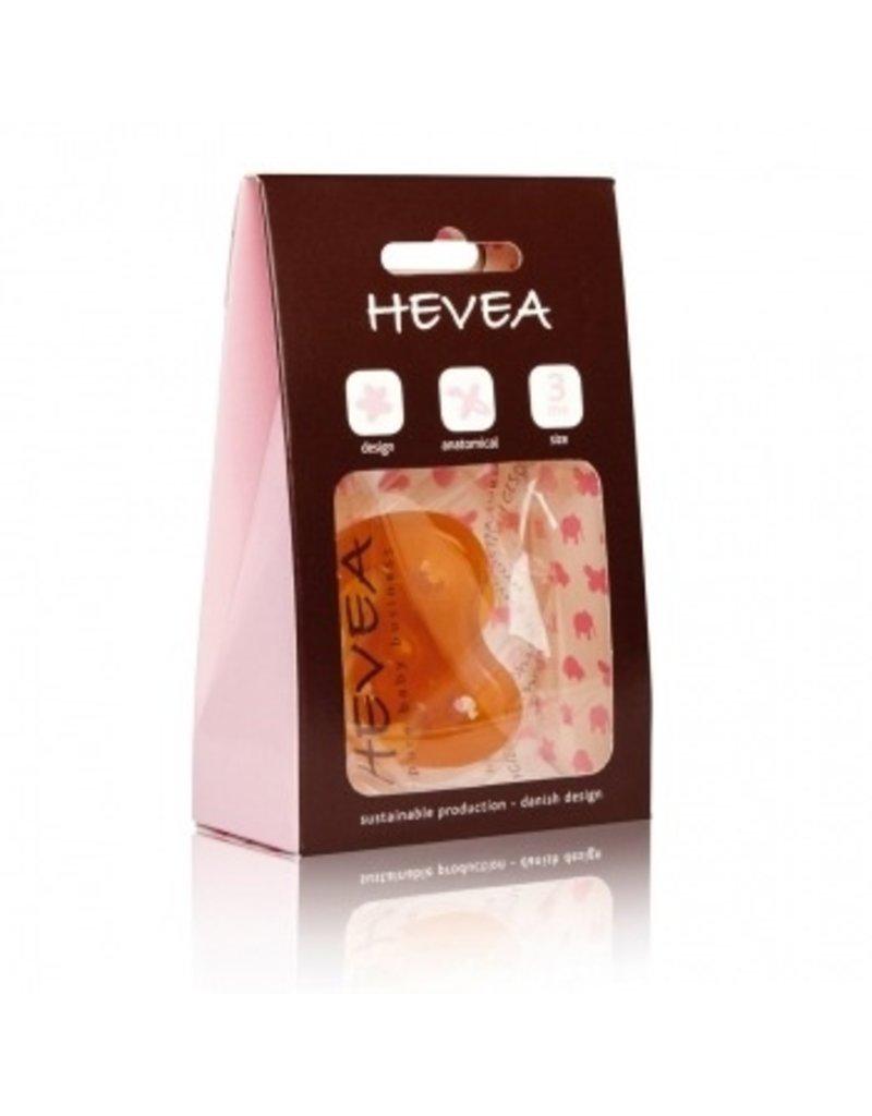 Hevea 3m+ - Flower