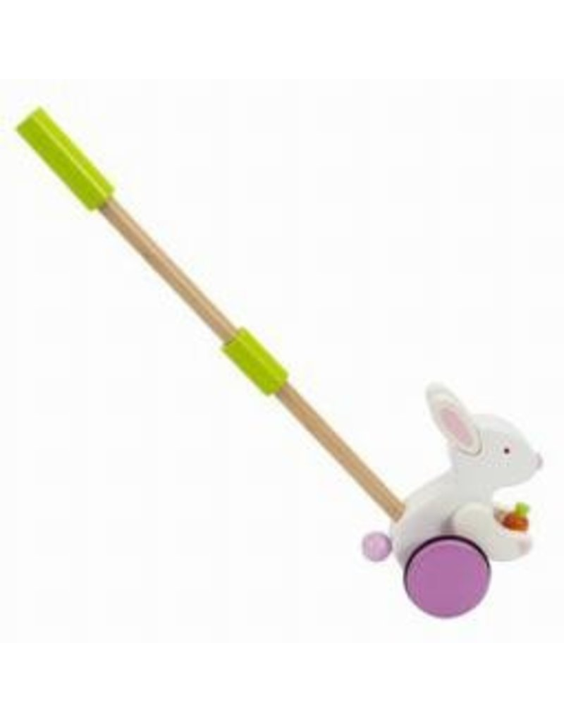 Hape Toys Hape Push Pal Bunny