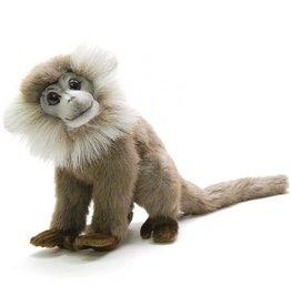 Hansa Hansa Leaf Monkey, Grey