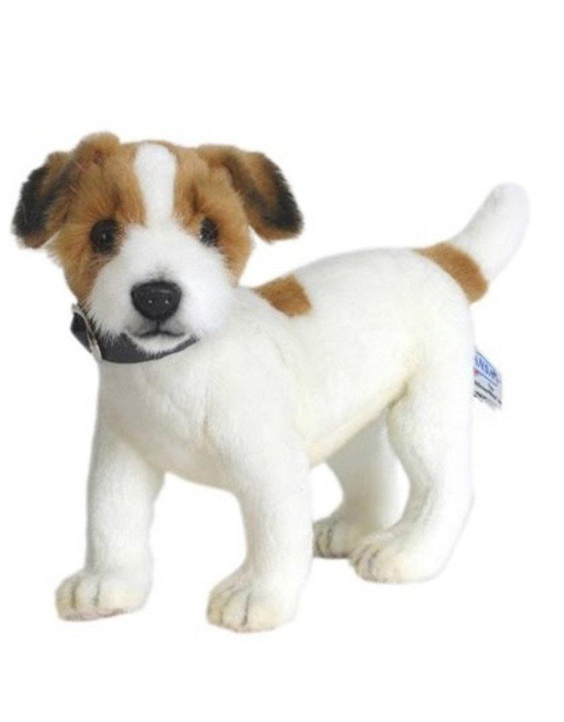 Hansa Hansa Jack Russell Terrier